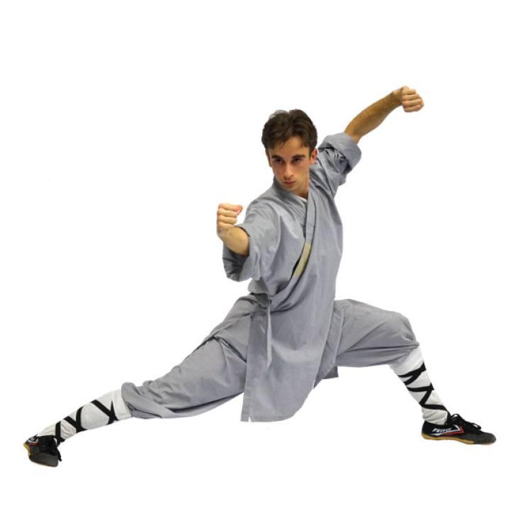 aleko-assistent-kungfu-almere